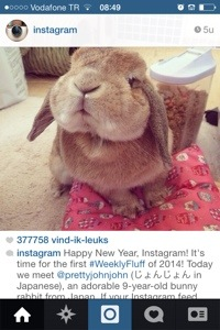 instagram schattigheid als marketing
