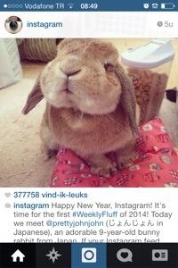 instagram schattigheid als marketing