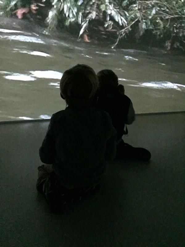 stedelijk museum den bosch
