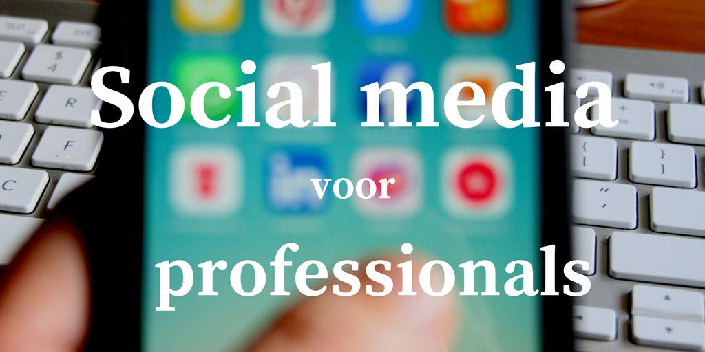 workshop social media voor professionals