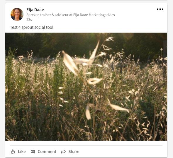 linkedin afbeeldingen sproutsocial