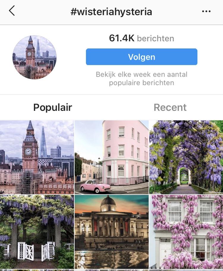 hashtags op instagram