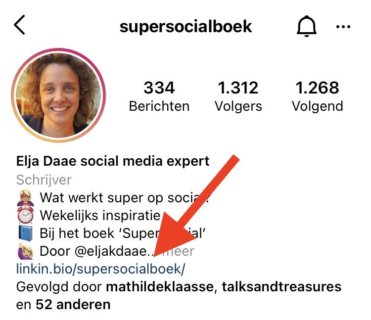 link in bio verkopen Instagram