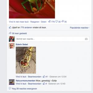 reacties en engagement facebook